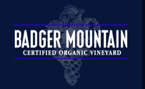 badger-mtn-logo